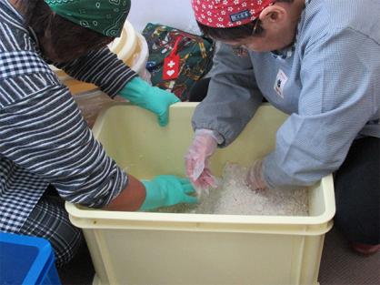 大豆加工サークルが味噌作りを行いました!
